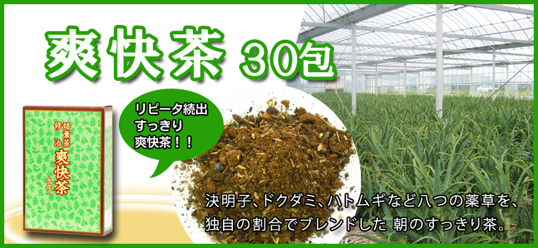 爽快茶・箱30パック