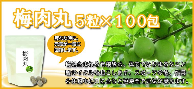 梅肉丸5粒×100包