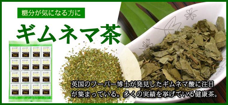 ギムネマ茶100パック