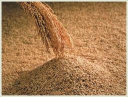 高品質の国産・玄米から製造