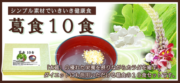 葛食10食