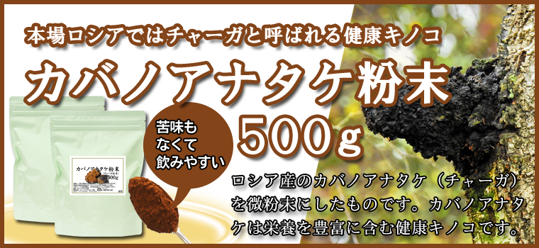 カバノアナタケ粉末500g