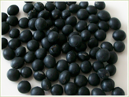 北海道産・黒豆を使用