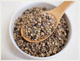 インド産のグアー豆を酵素で分解